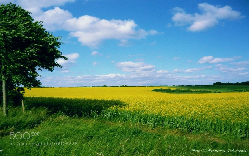 Photograph land of england by Francesco Pulvirenti on 500px
