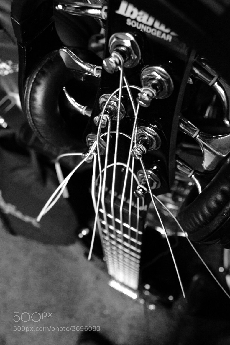 Photograph Bass  by Stephen Booker on 500px