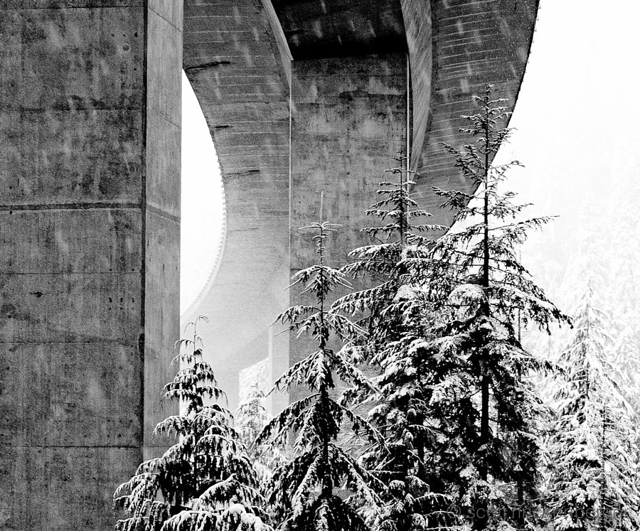 This latest installment of my Under the Bridge series takes on a wintery tone. Captured at Snoqualmie Pass underneath Interstate 90 during the first big snowstorm of the season.