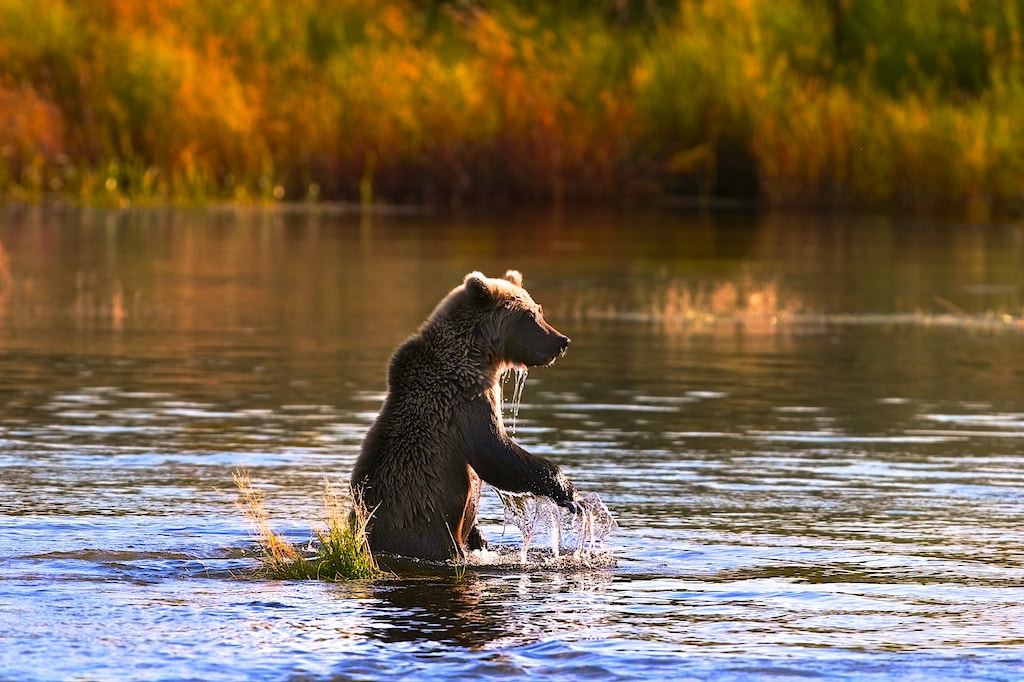 Photograph What A Beautiful Morning  by Buck Shreck on 500px