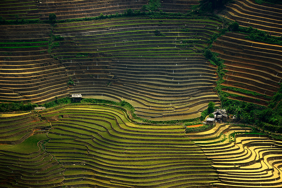 Sapa vietnam by sarawut Intarob on 500px.com