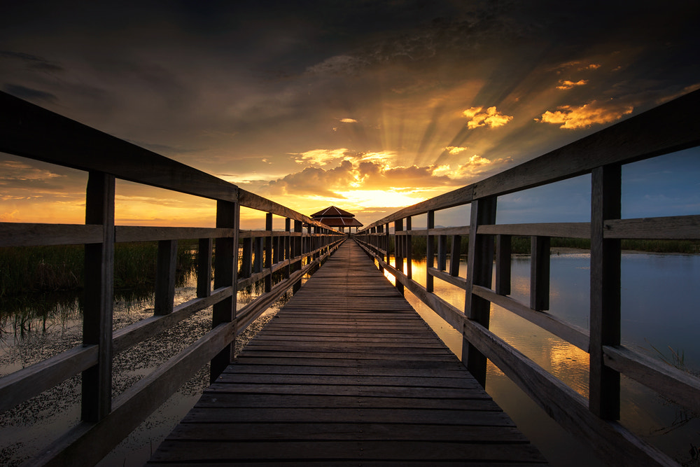 Photograph Ahead the bridge by pick chon on 500px