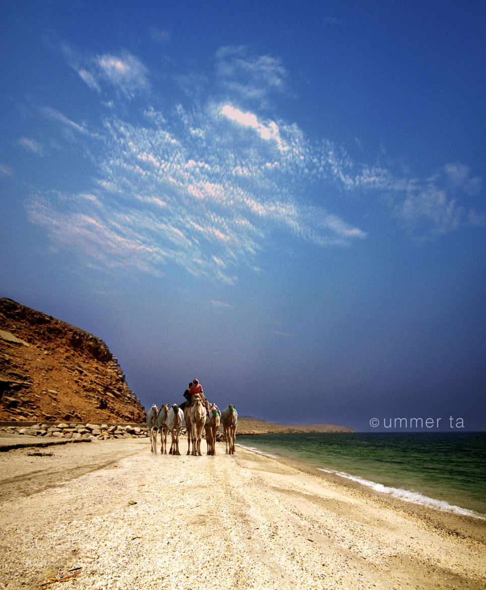 Photograph camel ride in beach by Artist Ummer Ta  on 500px