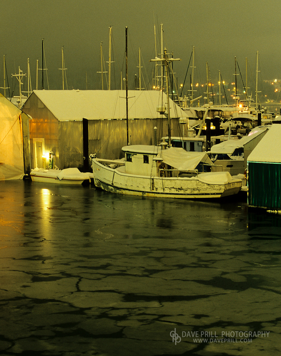 Photograph Frozen Marina by Dave Prill on 500px