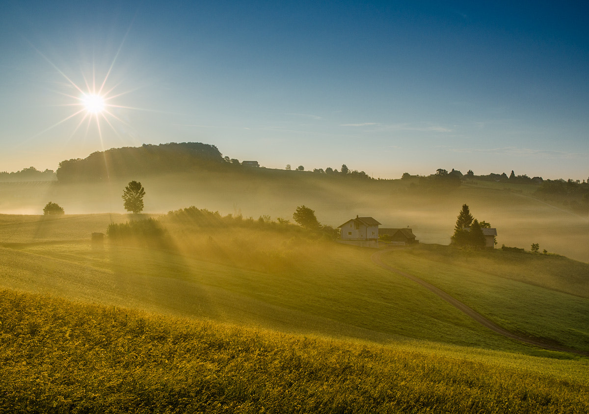 Photograph Sunny hills by Peter Zajfrid on 500px