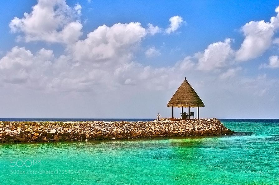 Photograph Paradise by Natalya Laykina on 500px