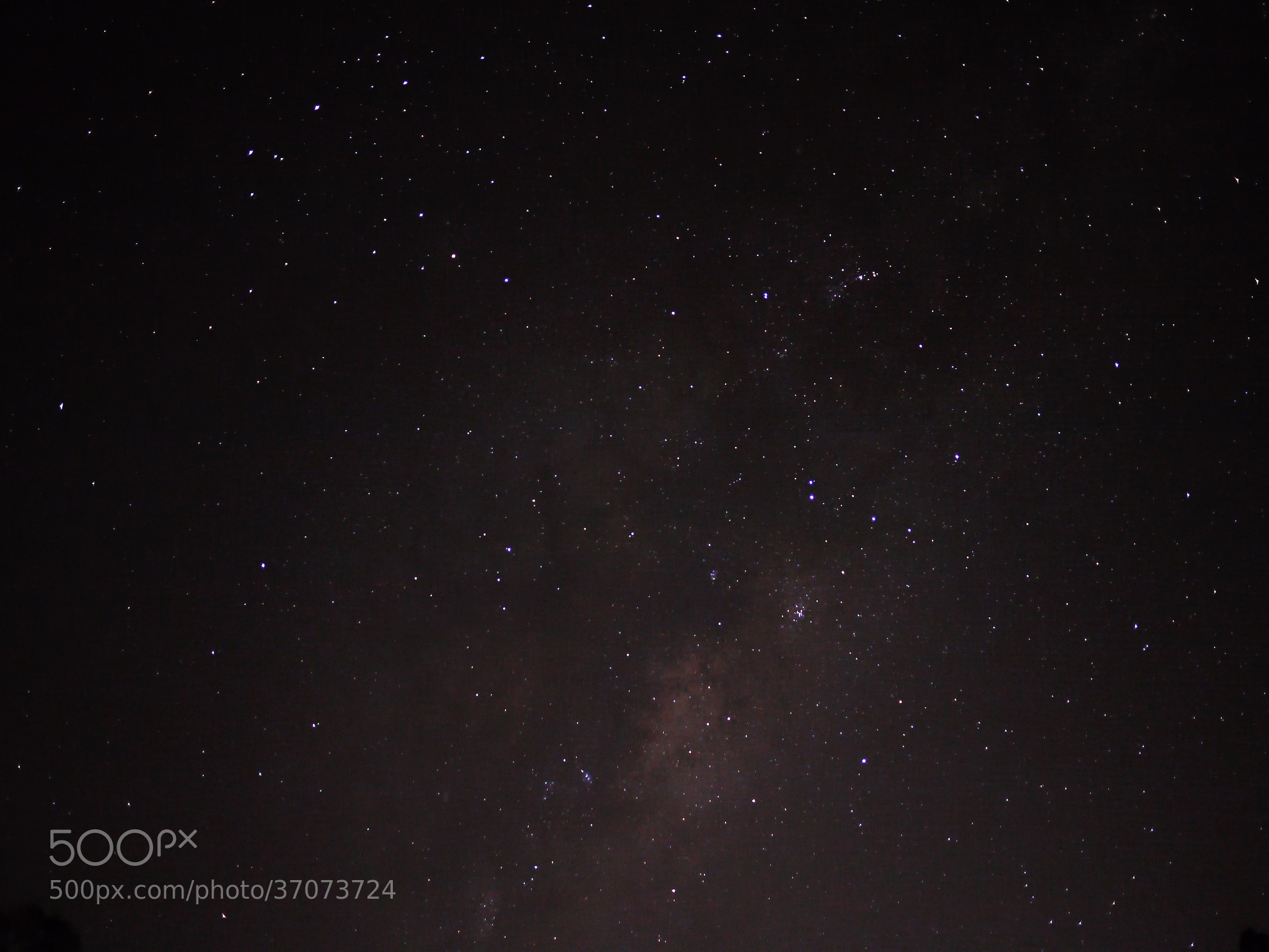 Photograph Scorpius and the Milky Way by tsuken on 500px