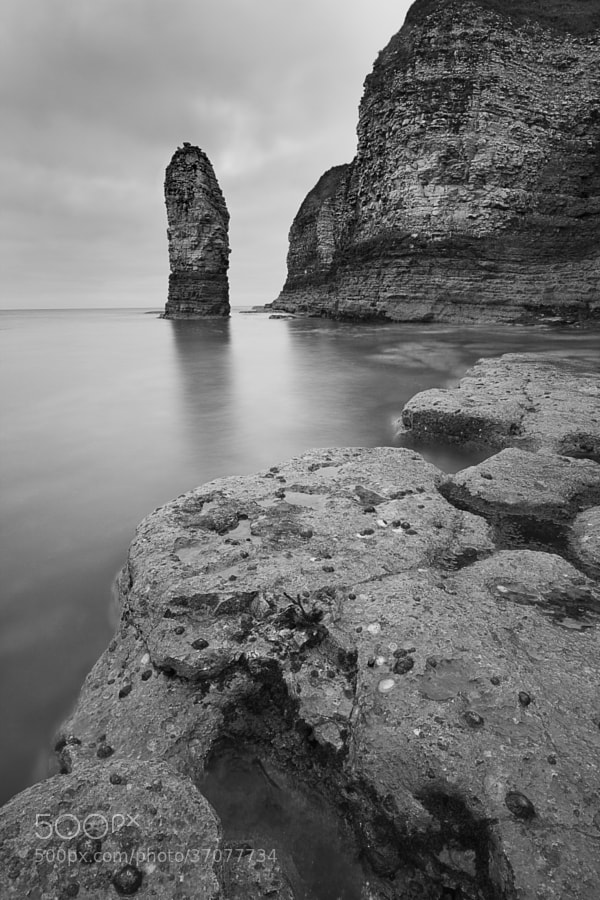 Flamborough Head seastack.