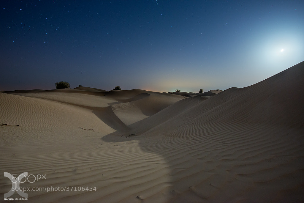 Photograph Moonlight Shadows by Daniel Cheong on 500px