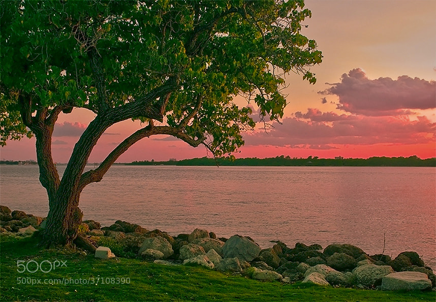 Photograph Sunset Bal Harbour by Natalya Laykina on 500px