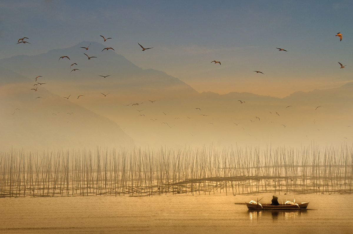 Photograph Cheerful in the morning by Saelanwangsa  on 500px