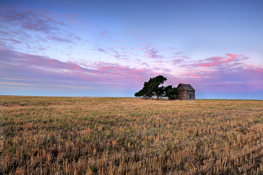 Photograph This Old House by Joshua Warrender on 500px