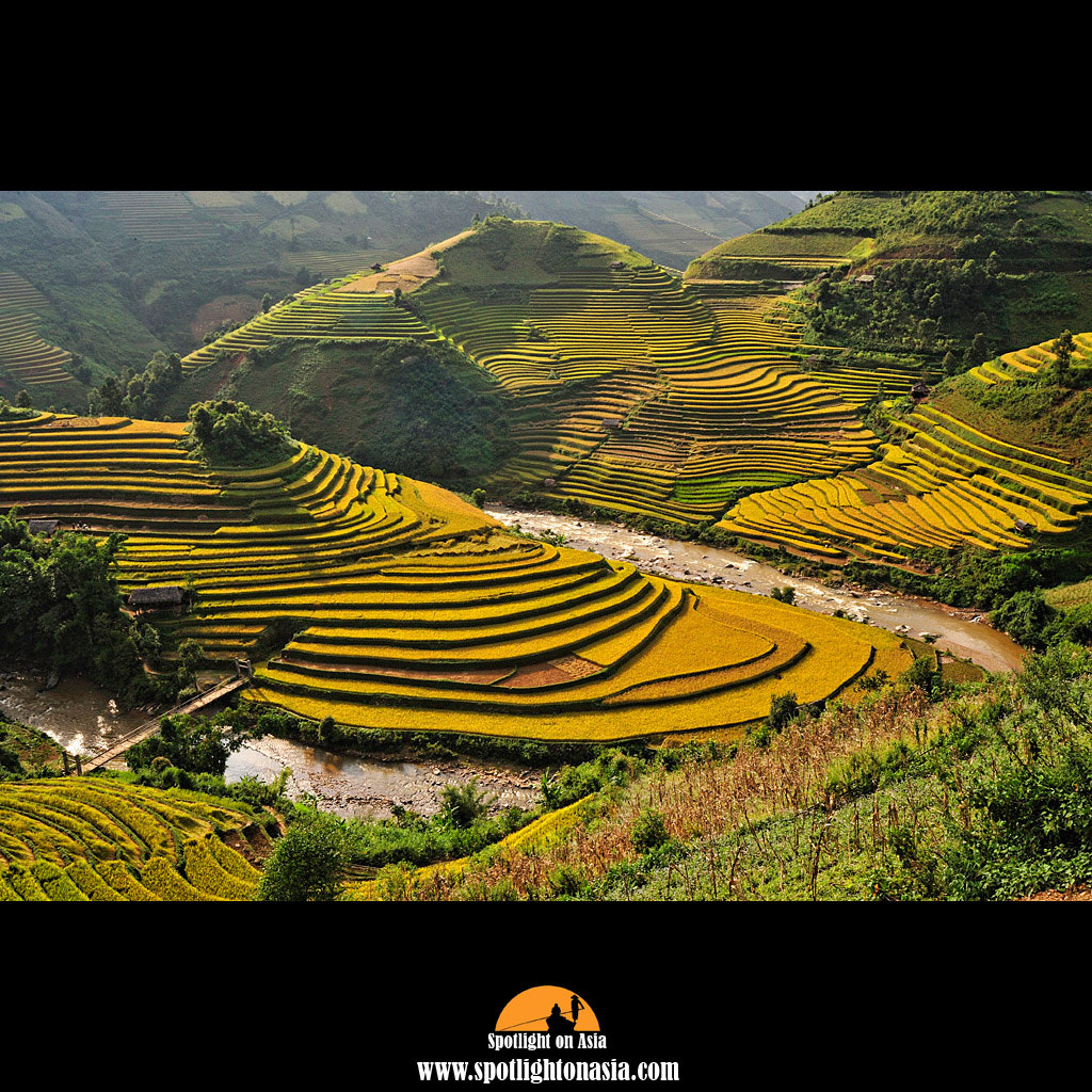 Photograph Mu Cang Chai by Malcolm Fackender on 500px