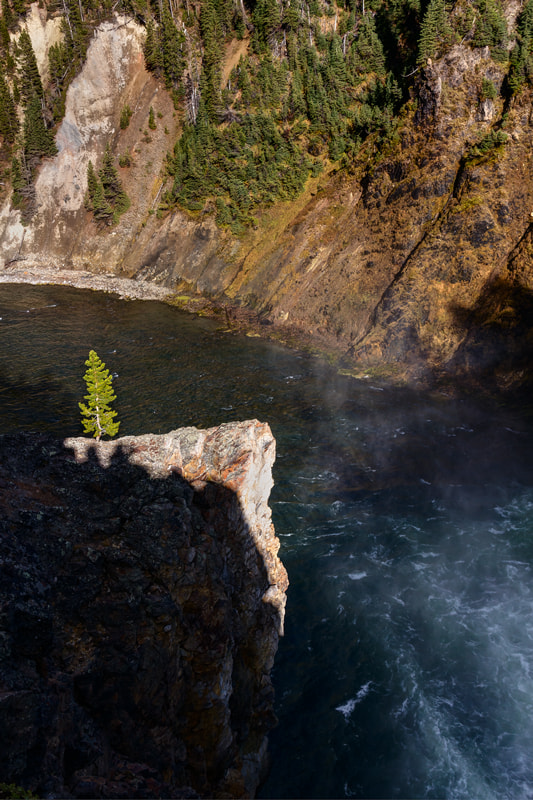 Photograph One and only one..., Yellowstone Park by Ilya Nazarenko on 500px