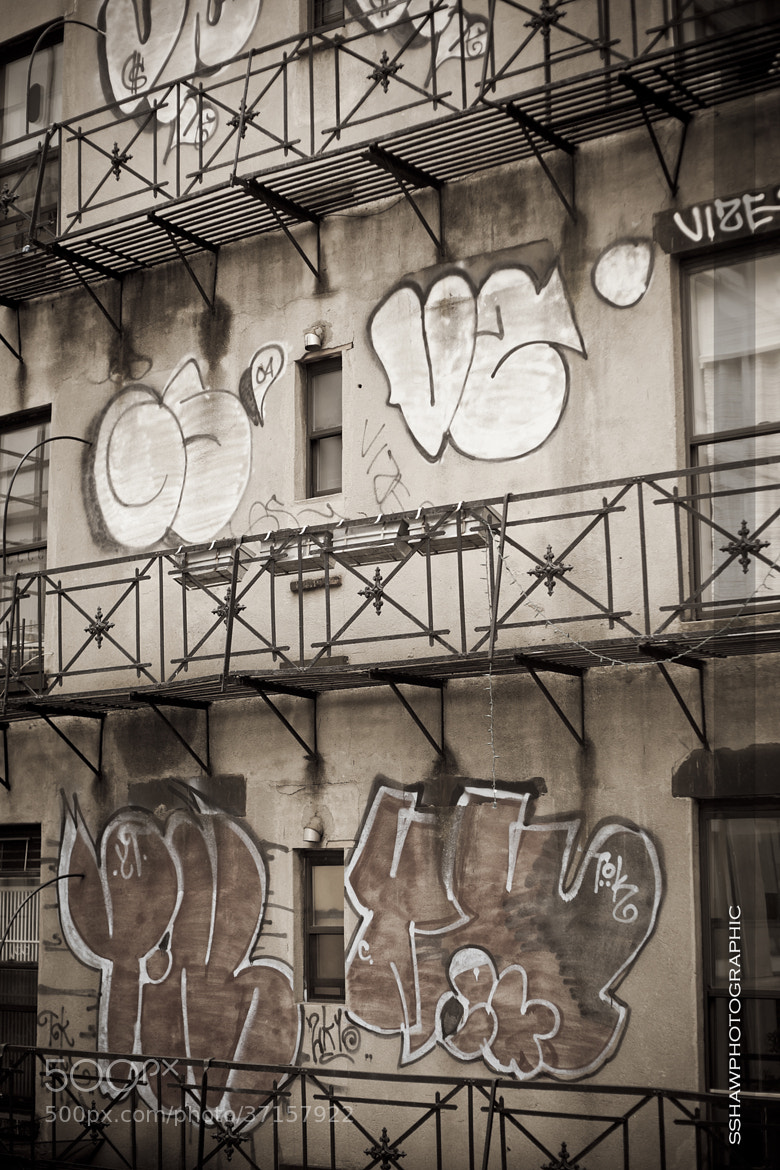 Photograph Urban Living by Shane Shaw on 500px