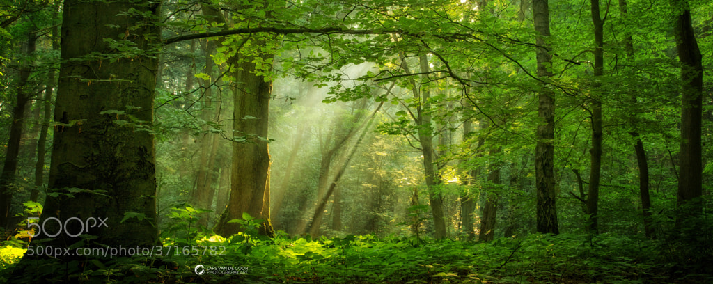 Photograph Breathe by Lars van de Goor on 500px
