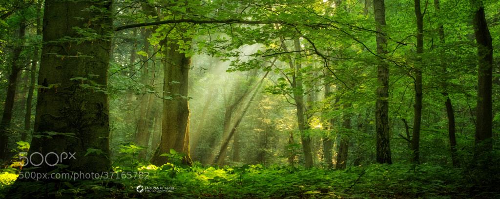 Photograph Breathe by Lars van de Goor on 500px
