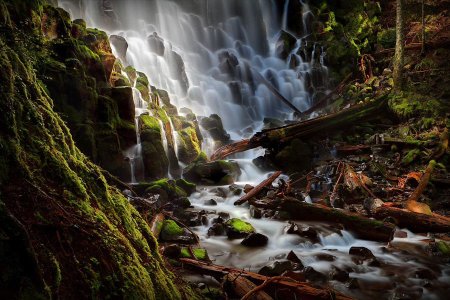 Photograph In the Land of Dreams and Fairytales by Tula Top on 500px