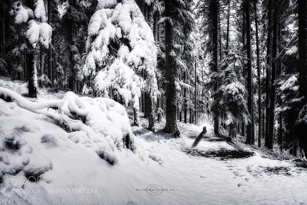 Photograph Loneliness by Bastien HAJDUK on 500px