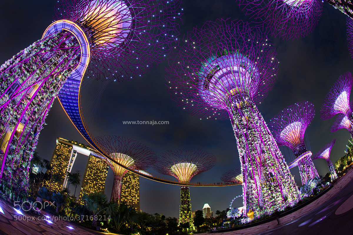 Photograph Garden by the Bay by Tonnaja Anan Charoenkal on 500px