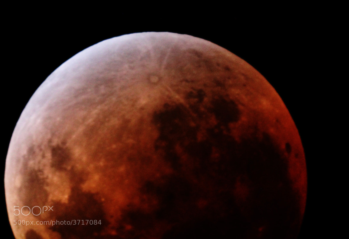 Photograph Red Moon by William Arnold on 500px