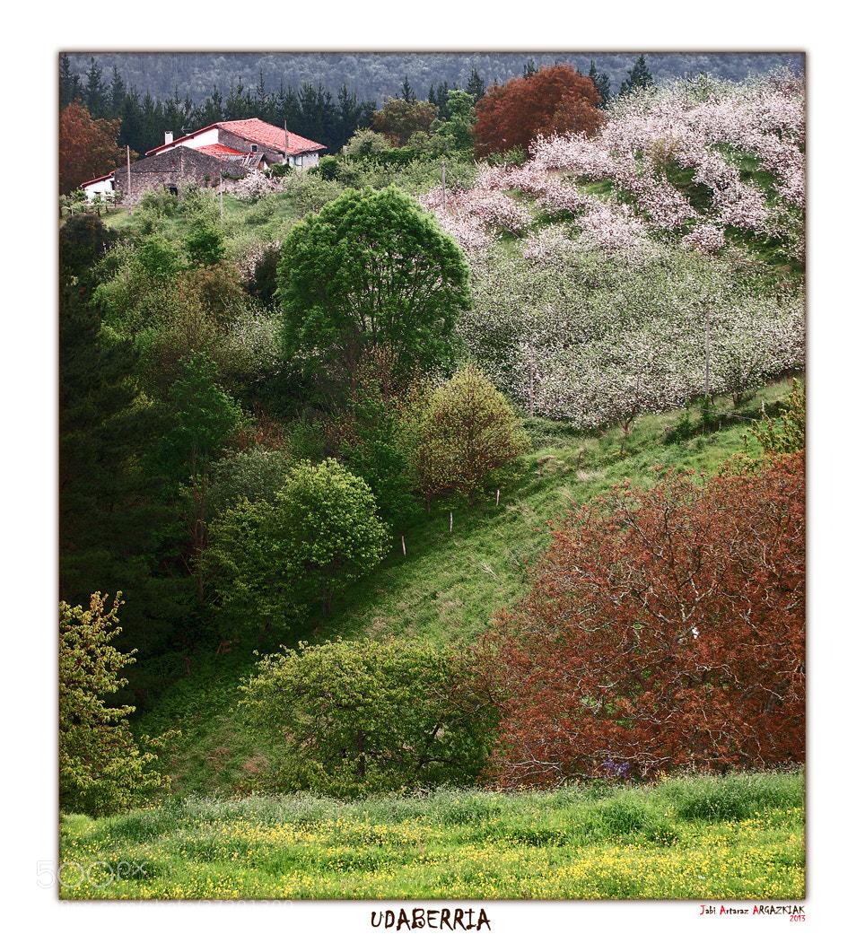 Photograph Indicios de la primavera by Jabi Artaraz on 500px