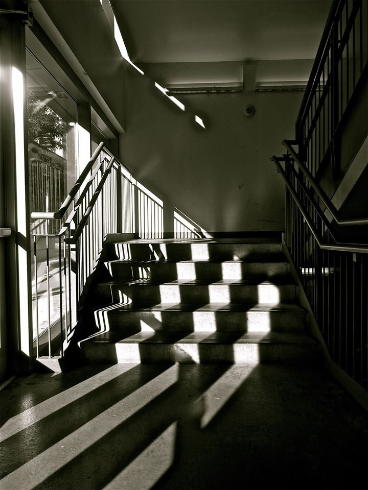 Photograph A Flight of Shadows by Kevin Haggith on 500px