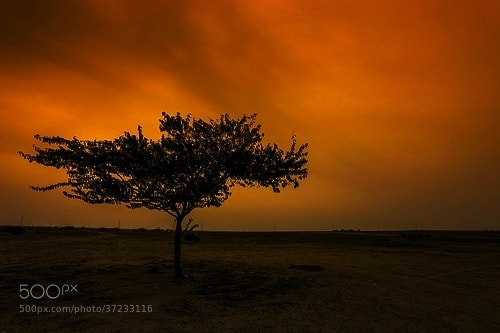 Photograph Sunset by  Safran on 500px