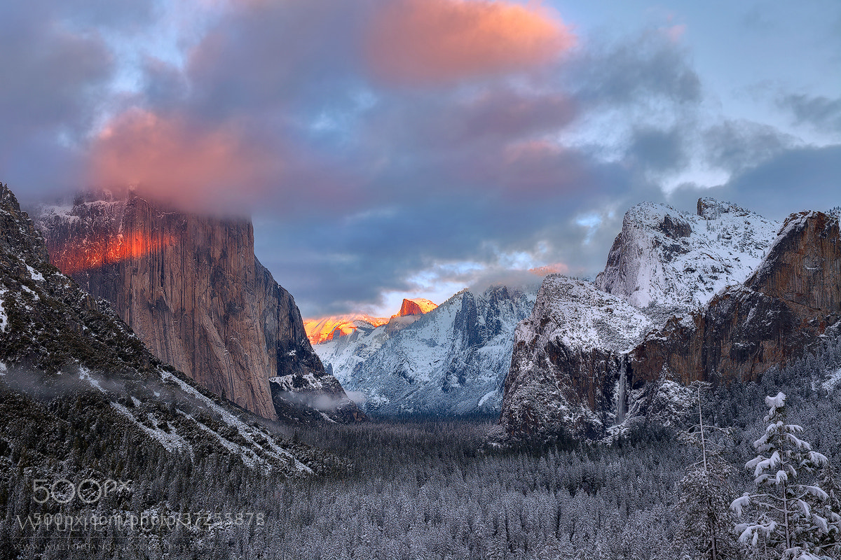 Photograph Winter Symphony by Willie Huang on 500px