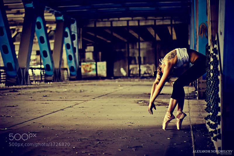 Photograph Untitled by Александр Новосельцев on 500px