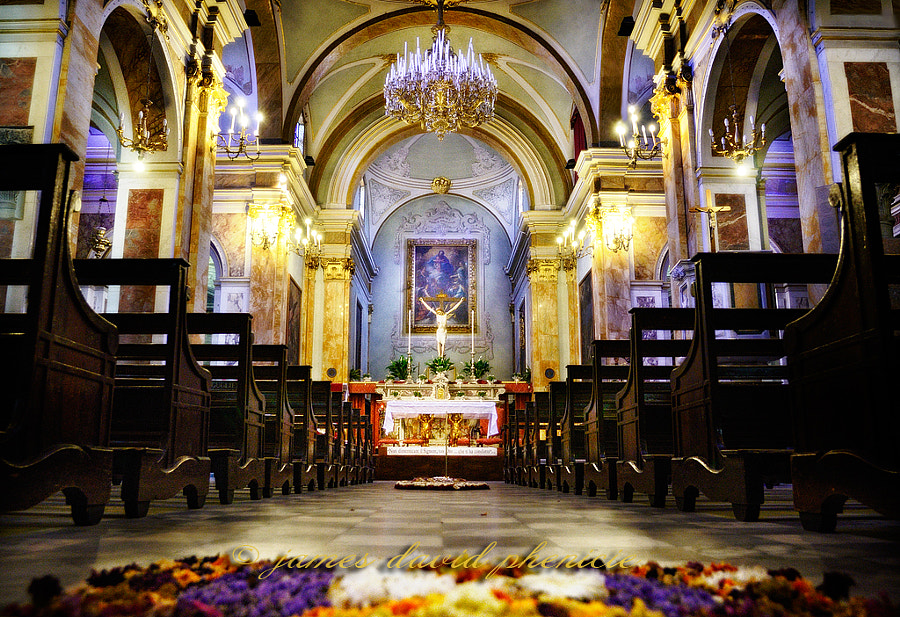 Interior of Church of San Pietro
