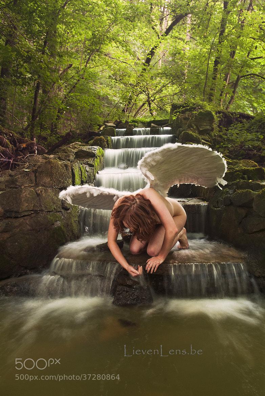 Photograph Angel by Lieven Vandergheynst on 500px