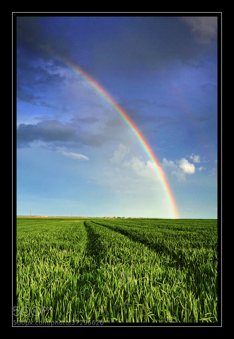 Photograph Over the rainbow by Alexandre Leroux on 500px