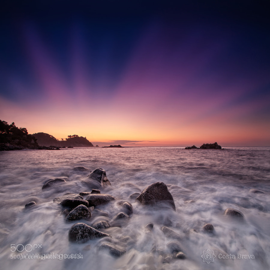 Photograph  Costa Brava, live nature 18 by Jordi Gallego on 500px