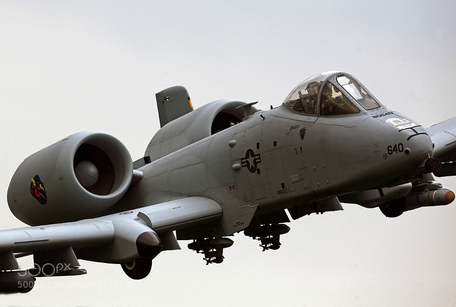 A-10 Warthog down low and in it's environment.