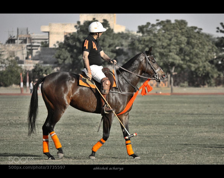 Photograph polo2 by abhishek Acharya on 500px
