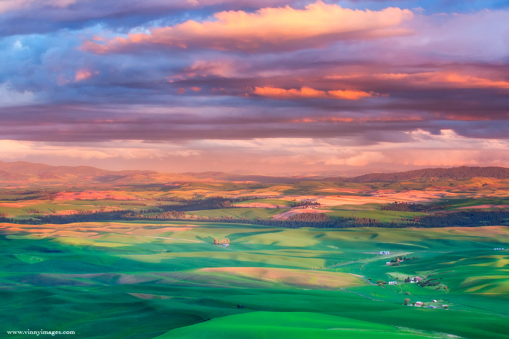 Photograph Fading Color @ the Palouse by Vinny Pickens on 500px