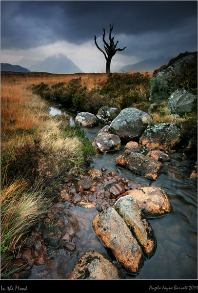 Photograph Moody Moor by Angie Latham on 500px