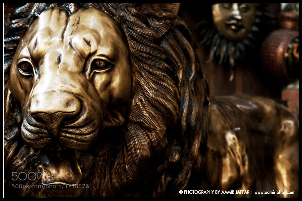 Photograph Metal lion by Aamir Jaffar on 500px