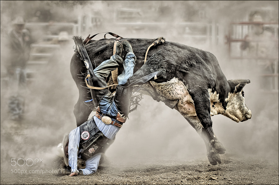 Photograph Involuntary Dismount by peter j on 500px