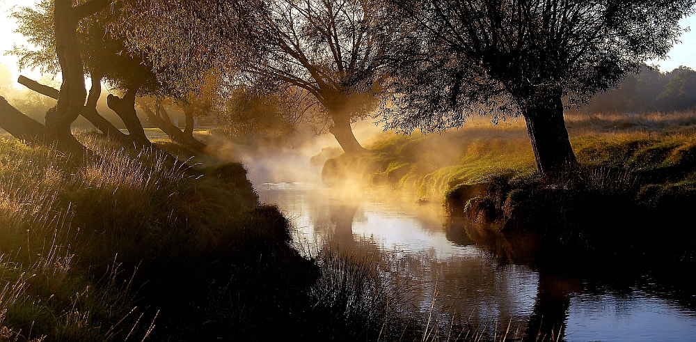 Photograph Beverly Brook by Matthew Harvey on 500px