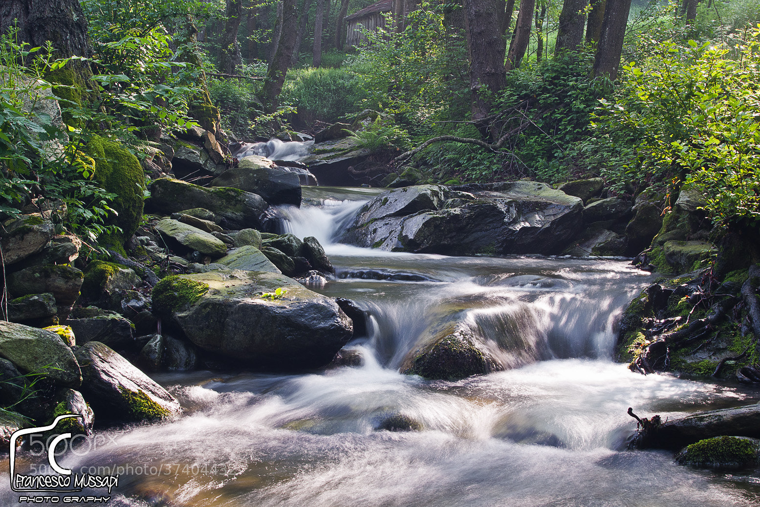 Photograph River in the green 5 by Francesco Mussapi on 500px