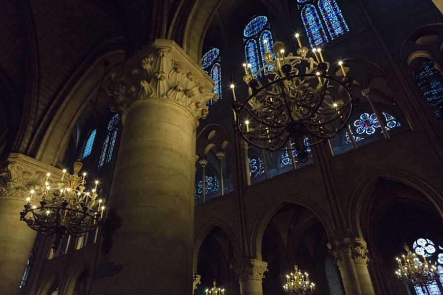 Inside Notre Dame 1