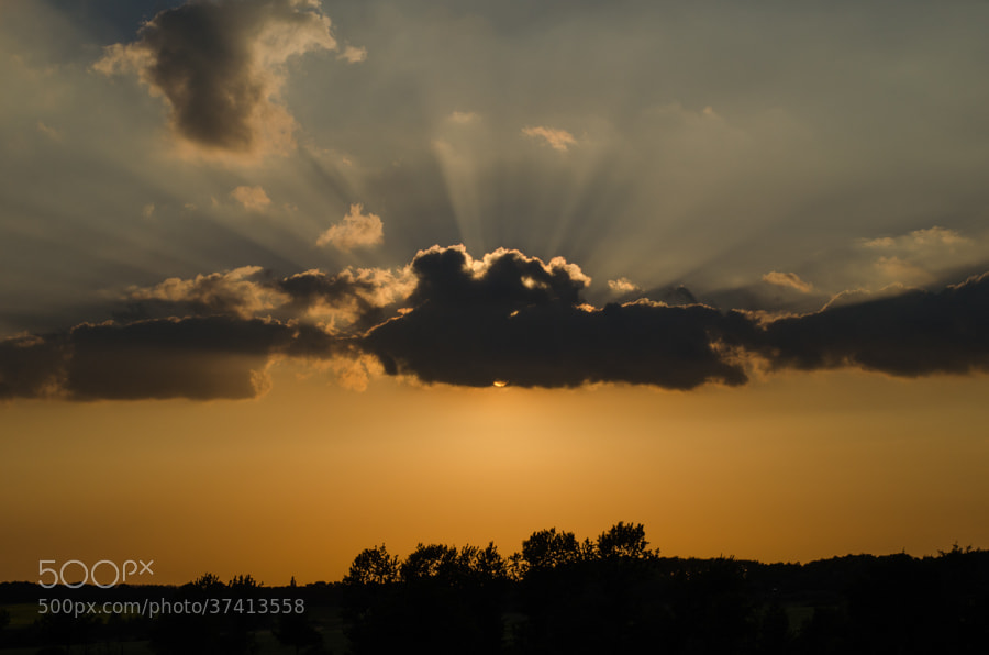 Photograph sunset in spring by Gunter Werner on 500px