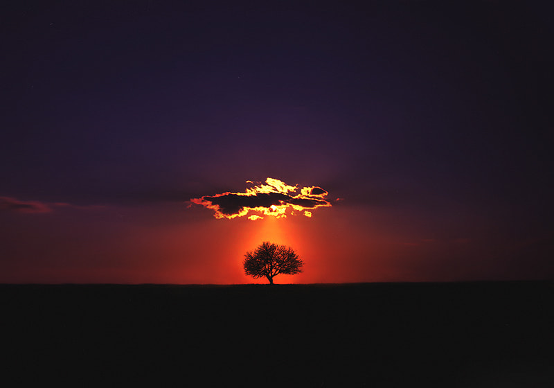 Photograph Shine on by Felicia Simion on 500px