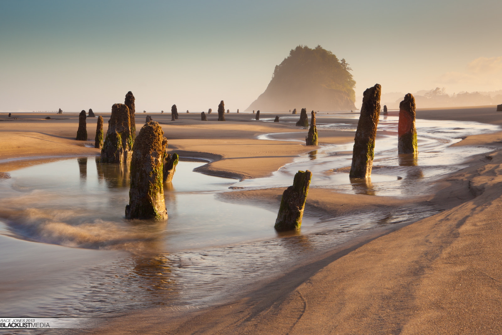 Photograph The Ghost Forest by Race  Jones on 500px