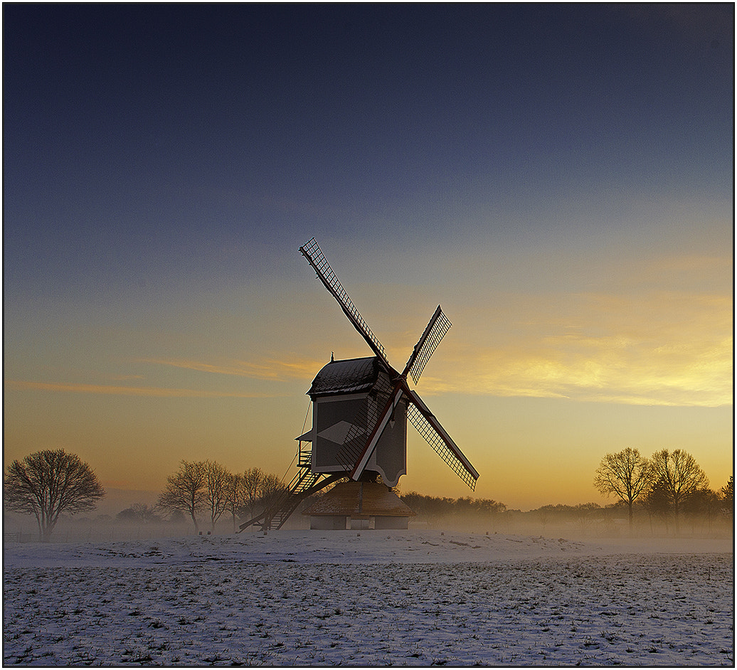 Photograph Morning Glow by wim denijs on 500px