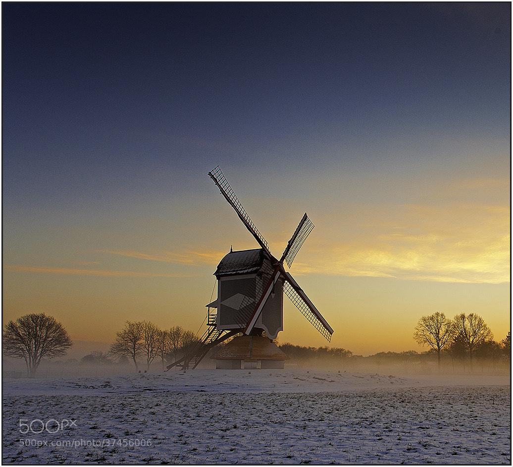 Photograph Morning Glow by wim denijs on 500px
