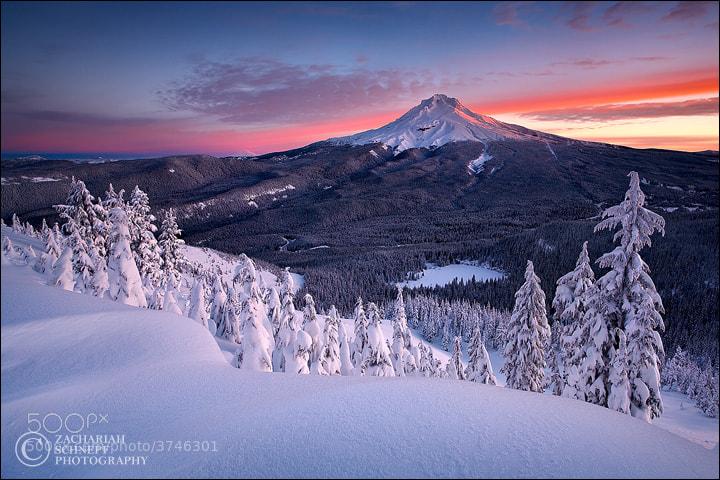 Mt Hood Majesty by Zack Schnepf (ZackSchnepf)) on 500px.com