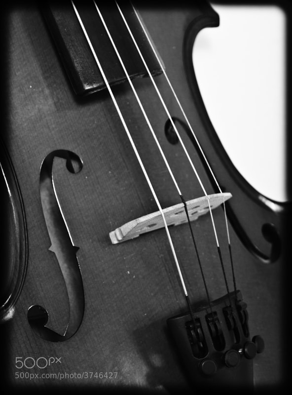 Photograph Violin by Enrique Chimal on 500px